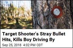 Target Shooter's Stray Bullet Hits, Kills Boy Driving By
