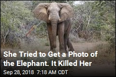 She Tried to Get a Photo of the Elephant. It Killed Her