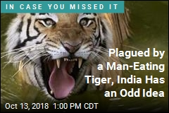 Plagued by a Man-Eating Tiger, India Has an Odd Idea
