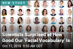 Human Brain Holds a Surprising Number of Faces