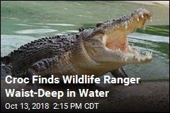 Croc Kills Wildlife Ranger