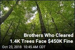 Brothers Who Cleared 1.4K Trees Face $450K Fine