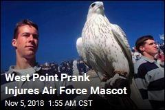 West Point Prank Injures Air Force Mascot