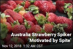 Australia Strawberry Spiker 'Motivated by Spite'