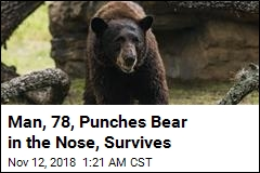 Man, 78, Survives Attack After Punching Bear