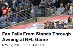 Fan Falls From Stands Through Awning at NFL Game
