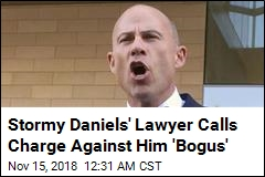 Stormy Daniels' Lawyer Accused of Domestic Violence