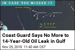 Coast Guard to Oil Firm: Clean Up Your 14-Year-Old Mess
