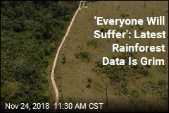 New Amazon Rainforest Data Paints Grim Picture