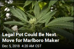 Marlboro Maker Exploring Legal Pot Possibilities