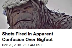 Shots Fired in Apparent Confusion Over Bigfoot