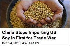 China Stops Importing US Soy in First for Trade War