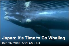 Japan: It's Time to Go Whaling