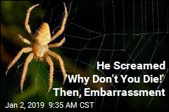 He Screamed 'Why Don't You Die!' Then, Embarrassment