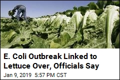 E. Coli Outbreak Linked to Lettuce Over, Officials Say