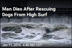 Man After Rescuing Dogs From High Surf