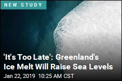 'It's Too Late': Greenland's Ice Melt Will Raise Sea Levels