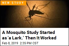 Diet Drugs Trick Mosquitoes Into Feeling Full