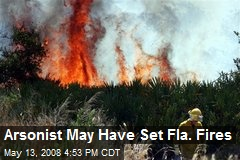 Arsonist May Have Set Fla. Fires