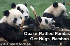 Quake-Rattled Pandas Get Hugs, Bamboo