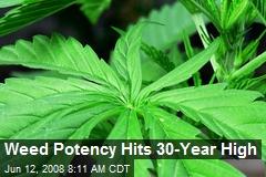 Weed Potency Hits 30-Year High