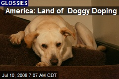 America: Land of Doggy Doping