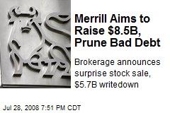 Merrill Aims to Raise $8.5B, Prune Bad Debt