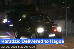 Karadzic Delivered to Hague