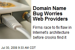 Domain Name Bug Worries Web Providers