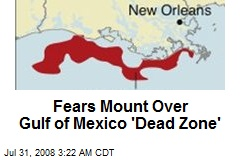 Fears Mount Over Gulf of Mexico 'Dead Zone'