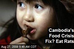 Cambodia's Food Crisis Fix? Eat Rats