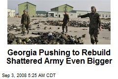 Georgia Pushing to Rebuild Shattered Army Even Bigger