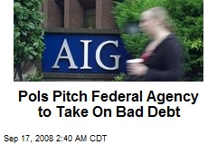 Pols Pitch Federal Agency to Take On Bad Debt