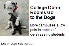 College Dorm Rooms Go to the Dogs