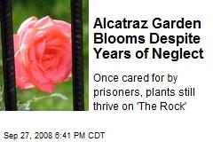 Alcatraz Garden Blooms Despite Years of Neglect