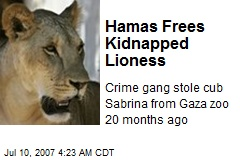 Hamas Frees Kidnapped Lioness