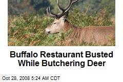 Buffalo Restaurant Busted While Butchering Deer
