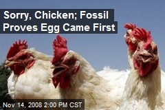 Sorry, Chicken; Fossil Proves Egg Came First