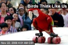 Birds Think Like Us