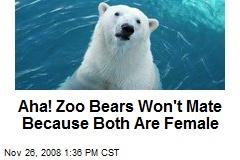 Aha! Zoo Bears Won't Mate Because Both Are Female