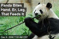 Panda Bites Hand, Er, Leg, That Feeds It