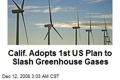 Calif. Adopts 1st US Plan to Slash Greenhouse Gases