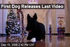 First Dog Releases Last Video