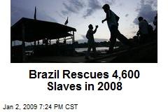 Brazil Rescues 4,600 Slaves in 2008