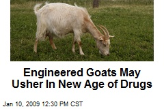 Engineered Goats May Usher In New Age of Drugs