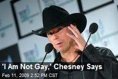 'I Am Not Gay,' Chesney Says