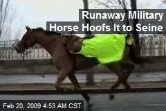 Runaway Military Horse Hoofs It to Seine