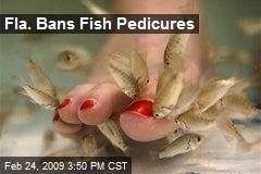 Fla. Bans Fish Pedicures