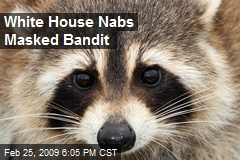 White House Nabs Masked Bandit