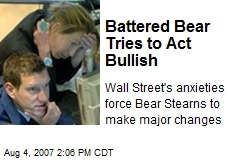 Battered Bear Tries to Act Bullish